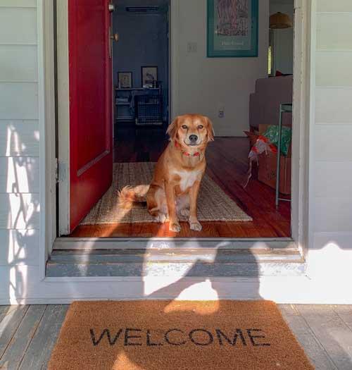 Entrance-Rugs-For-Hardwood-Floors-2