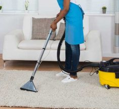 Best Vacuum For Oriental Rugs In 2021